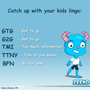 The Zeeko Glossary